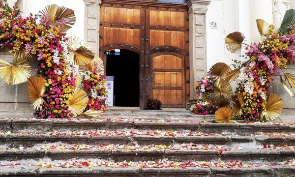 Embellecen con flores de exportación la ciudad colonial