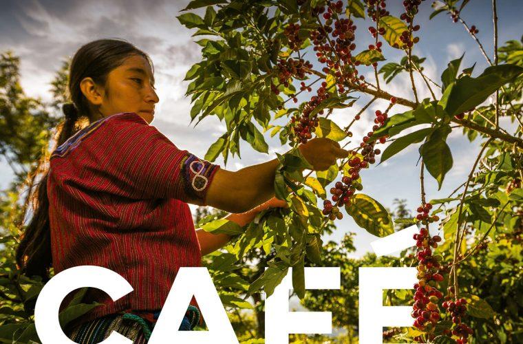 Café la esencia de Guatemala