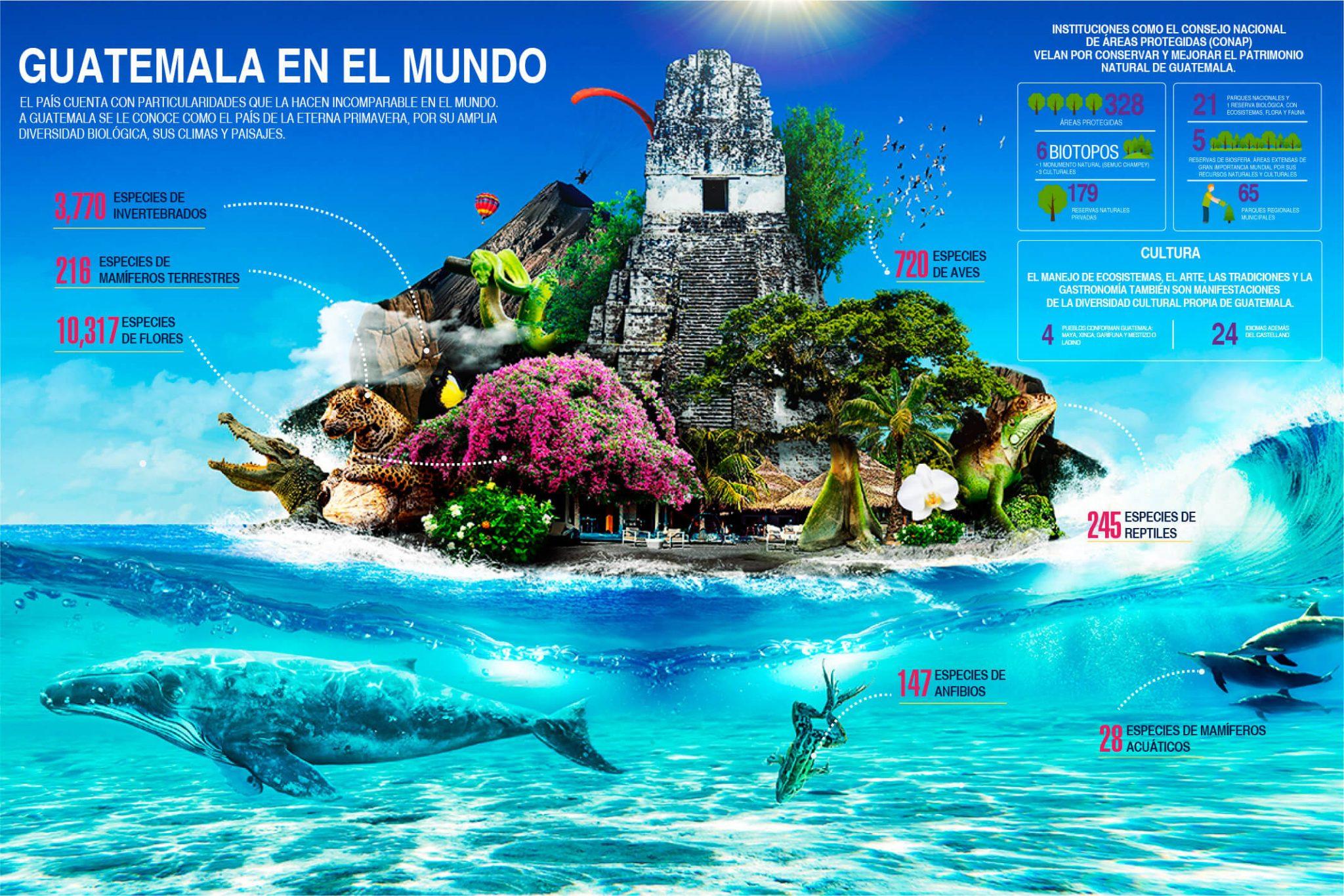 guatemala en el mundo